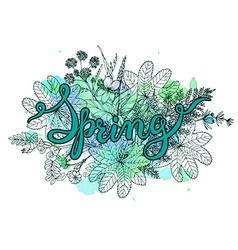 Hand lettering word Spring with hand drawn herbs vector image