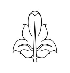 a fleur de lis heraldic coat arms vector image