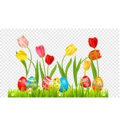 eggs and tulips banner vector image