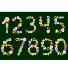 Flower numbers vector image