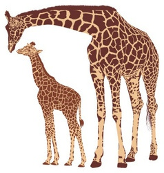 Giraffe mother with cub vector