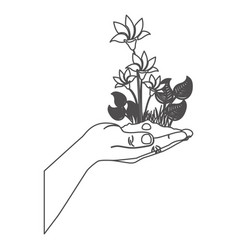 Grayscale contour with plant with flowers over vector