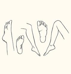 Sketch legs vector