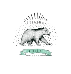 Vintage label bear Design for T Shirt vector image