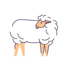 White sheep side view flat livestock farming vector