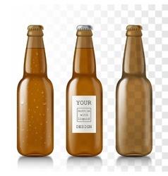 Empty glass bottles vector image