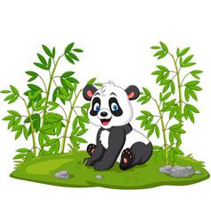 cartoon panda in bamboo tree vector image