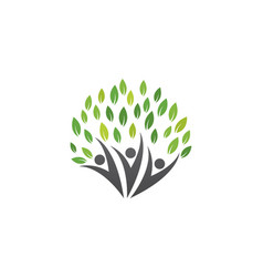 family tree symbol icon logo design vector image