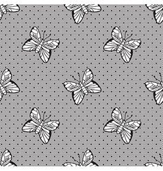 Gentle dotted lace with butterflies vector