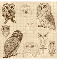 Set of retro owl sketches vector
