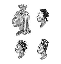african national male hairstyles profile a man vector image
