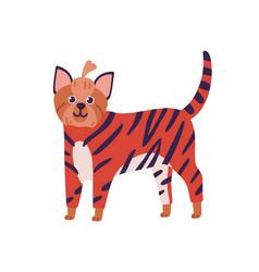 attractive cartoon yorkshire terrier dog breed vector image
