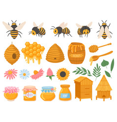 beekeeping apiculture products various honey in vector image