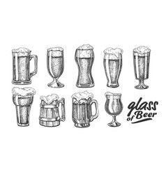 hand drawn glass with foam bubble beer set vector image
