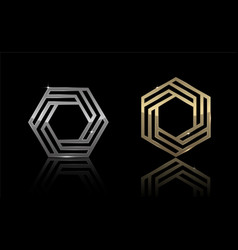 hexagon gold and silver 5 vector image