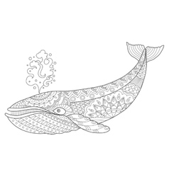 Whale coloring book vector