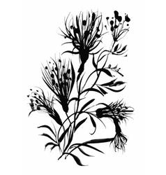 Beautiful hand-drawn monochrome herbs vector image