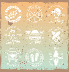 surfing light emblems on bright background vector image