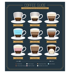 Coffee Guide Diagram vector image