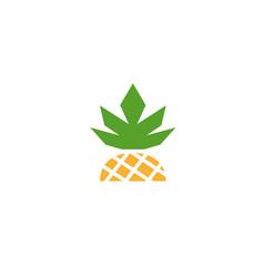 half ananas vector image