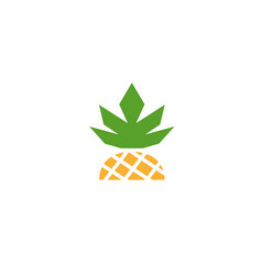 half pineapple ananas fruit vector image