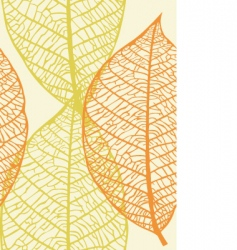 leaves wallpaper vector image