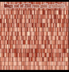 mega set consisting of collection 256 rose gold vector image