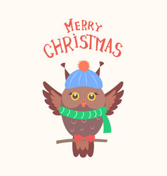 merry christmas feathered owl isolated vector image