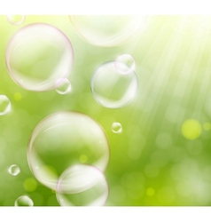 Soap bubbles vector