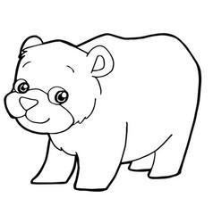 cartoon cute bear coloring page vector image vector image