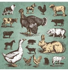 farm animals vintage set vector image vector image
