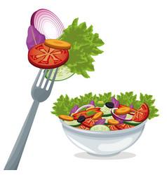 salad vegetables fresh organic food vector image vector image