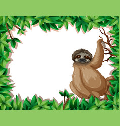 A sloth in nature frame vector