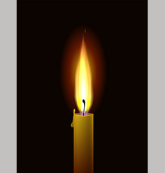 Candle flame realistic burning paraffin vector