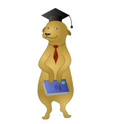 Cartoon meerkat with a book vector