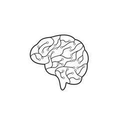 Circuit brain icon vector