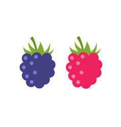 raspberry icon flat berry vector image