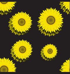 seamless pattern sunflower on black summer vector image