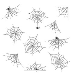 set of different kinds of web with spiders on a vector image