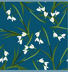 white snowdrop flower on indigo blue background vector image vector image