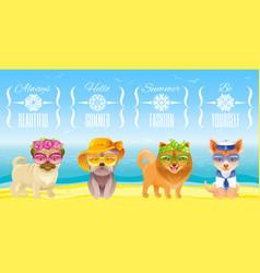 summer fashion puppy dog icon set in sweet retro vector image