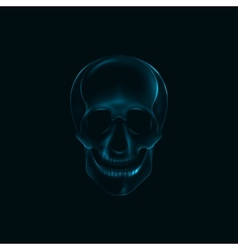 a human skull x-ray print medical conce vector image