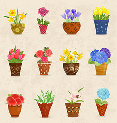 cozy collection of flowers planted in ceramic pots vector image