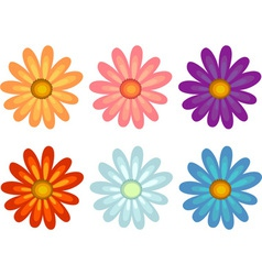 Flowers of different colours vector image
