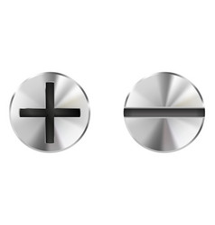 Metal bolts slotted and philips heads vector