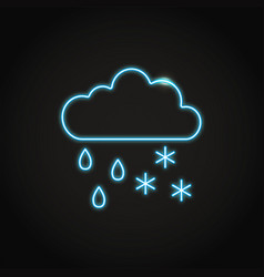 neon cloud with rainfall and snow icon in line vector image