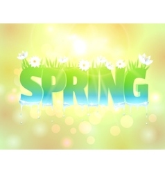 Spring word with flowers and grass vector image vector image