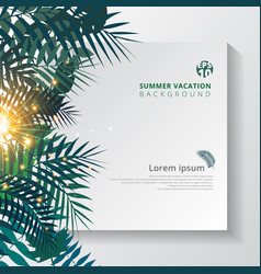 summer tropical with exotic palm leaves or plants vector image