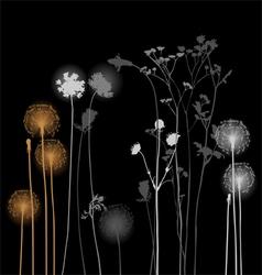 Collection for designers - dandelion plants vector image