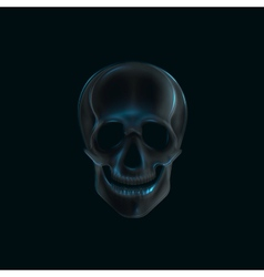 a human skull x-ray print medical concept vector image